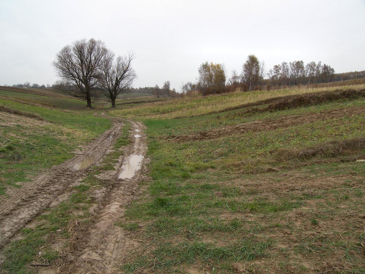 okolice Dzibic Bodziejowic i Zagórza