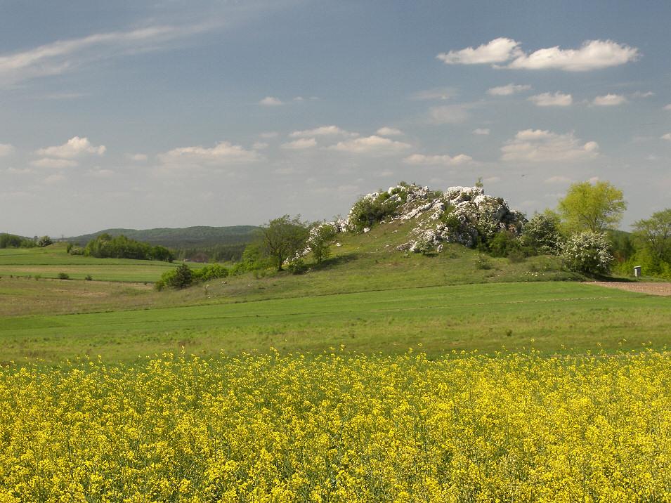 okolice Suliszowic