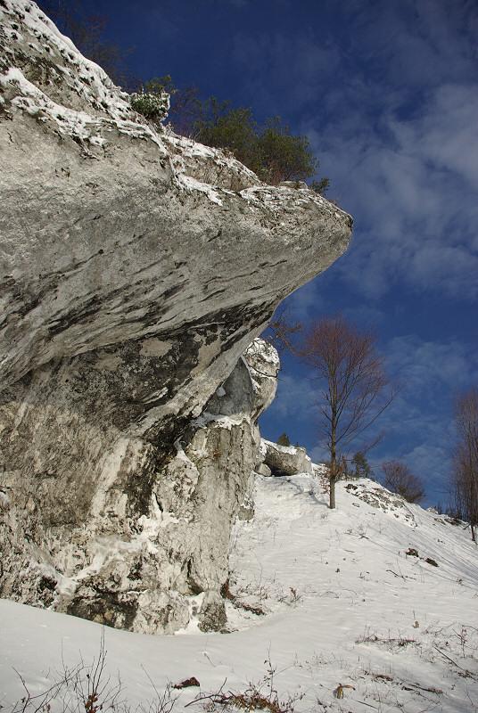 rez. Góra Zborów