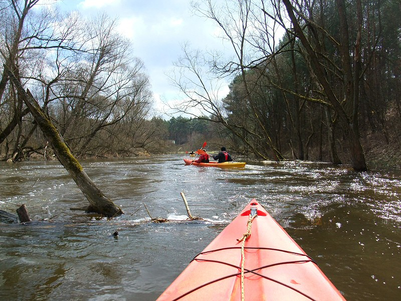 Wczesnowiosenny spływ kajakowy rzeką Liswartą