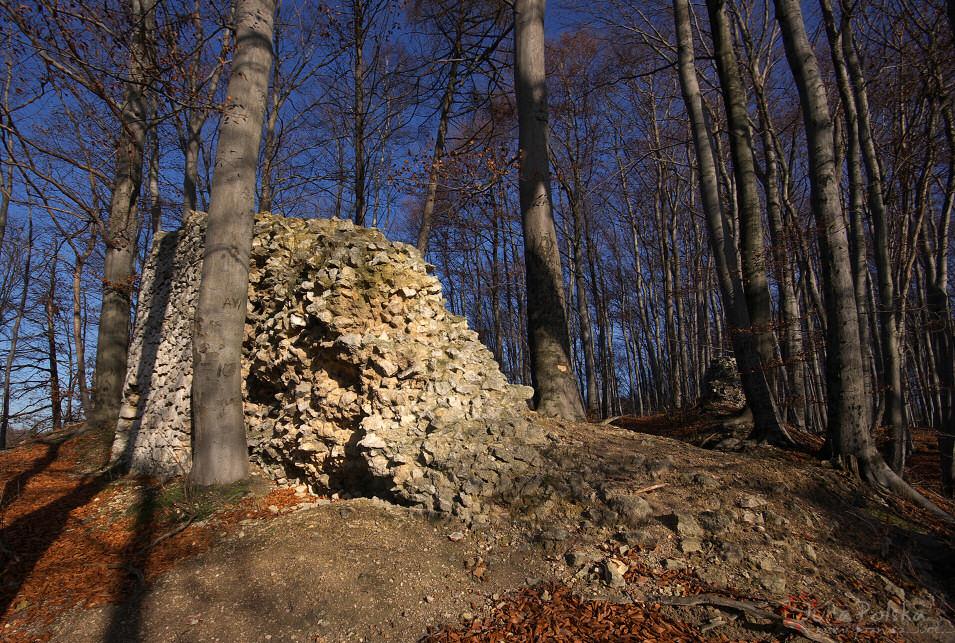 Zamek Udórz