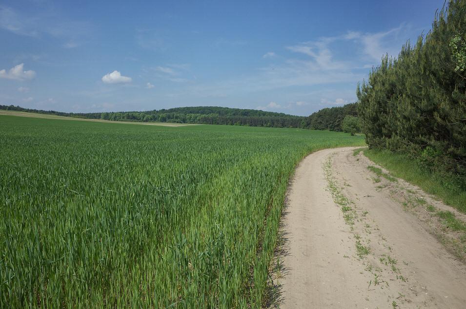 Okolice Sierbowic