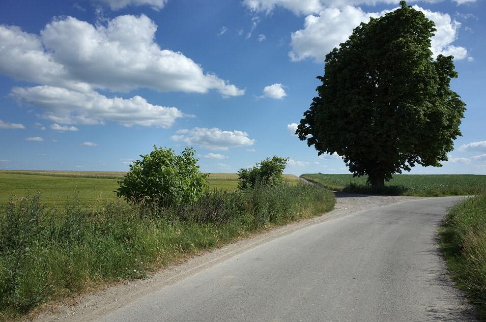 Okolice Uliny