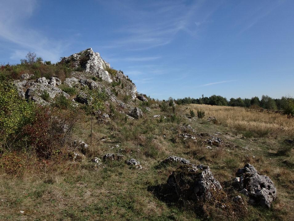 Bukowie, okolice Trzebniowa