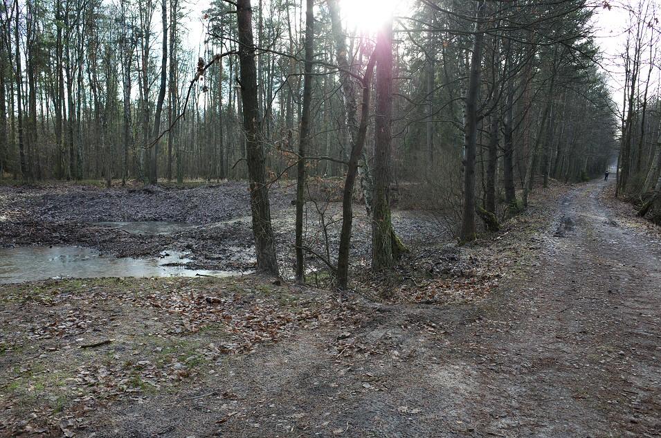 okolice Poręby