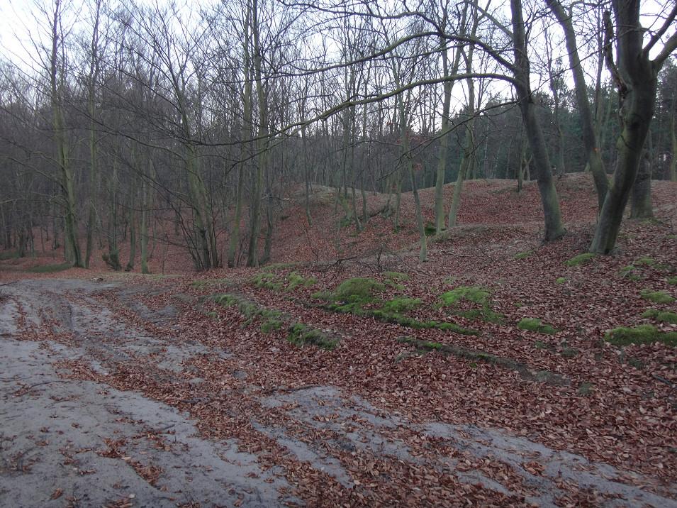 Okolice Czarnego Kamienia