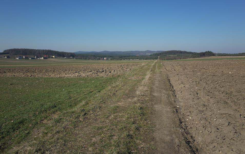 okolice Gołuchowic