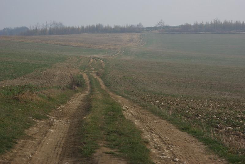 Okolice Żerkowic