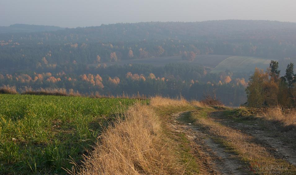 Dolina Krztyni