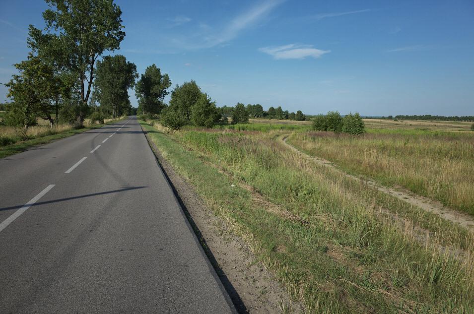 okolice Koziegłów