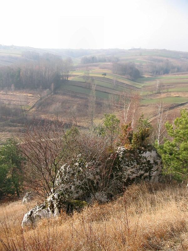 Okolice Mzurowa
