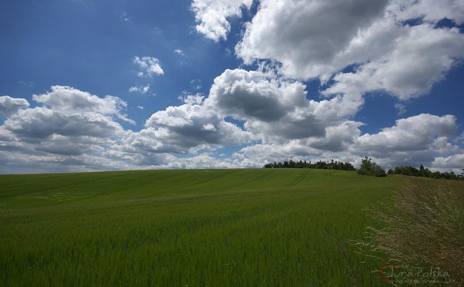 Góra Bieńkówka
