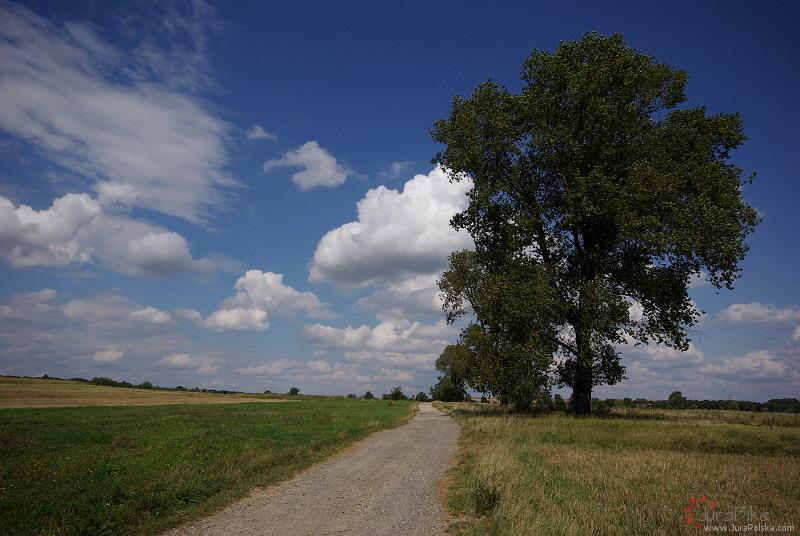 Okolice Małusów