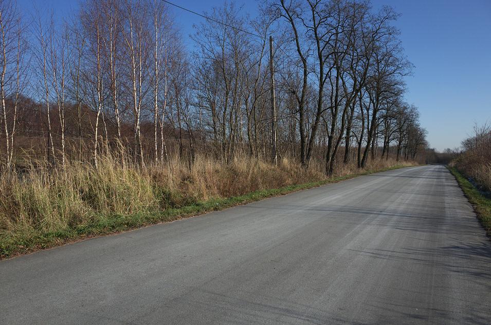 okolice Krzykawy