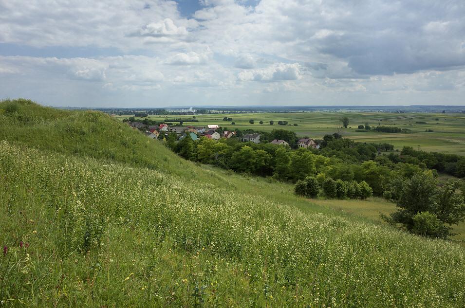 Skowronno Górne, Góry Pińczowskie
