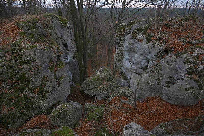 Skałki Doliny Wiercicy