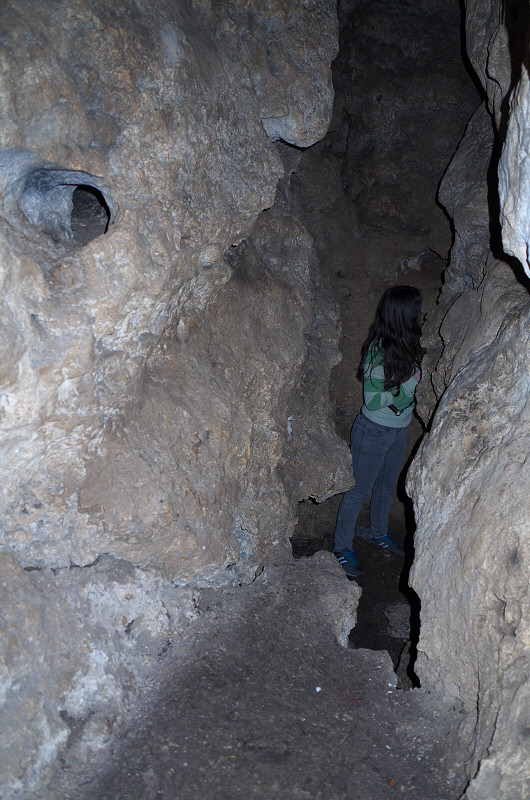 Dolina Wodąca, Jaskinia Psia