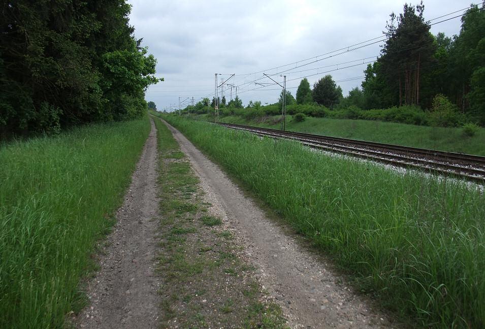 Nowa Wieś Żarecka