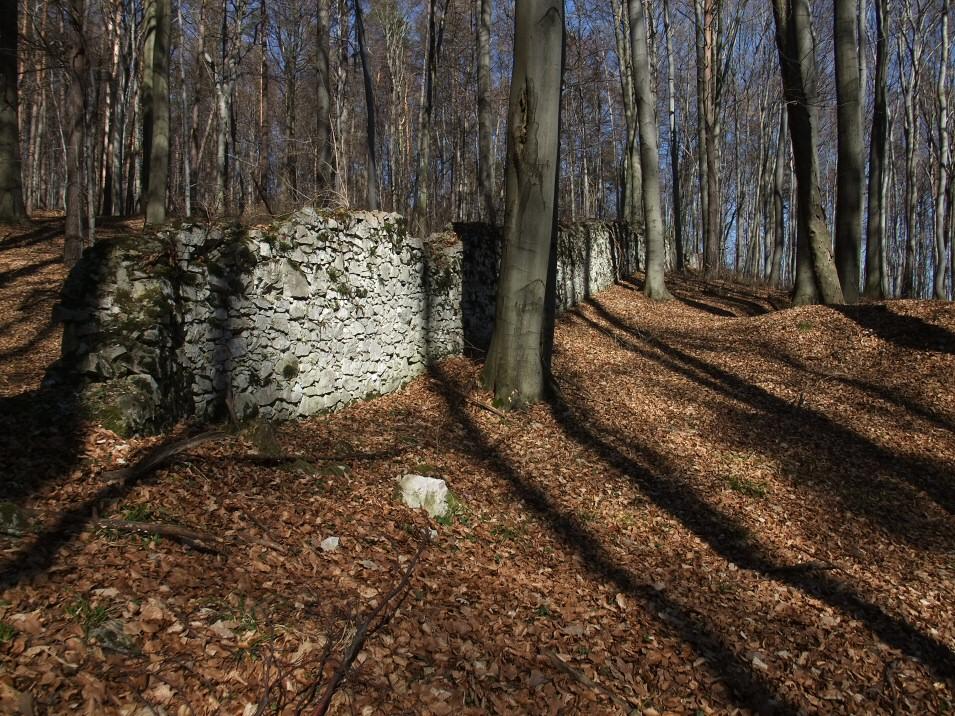 Mur otaczający klasztor OO Karmelitów