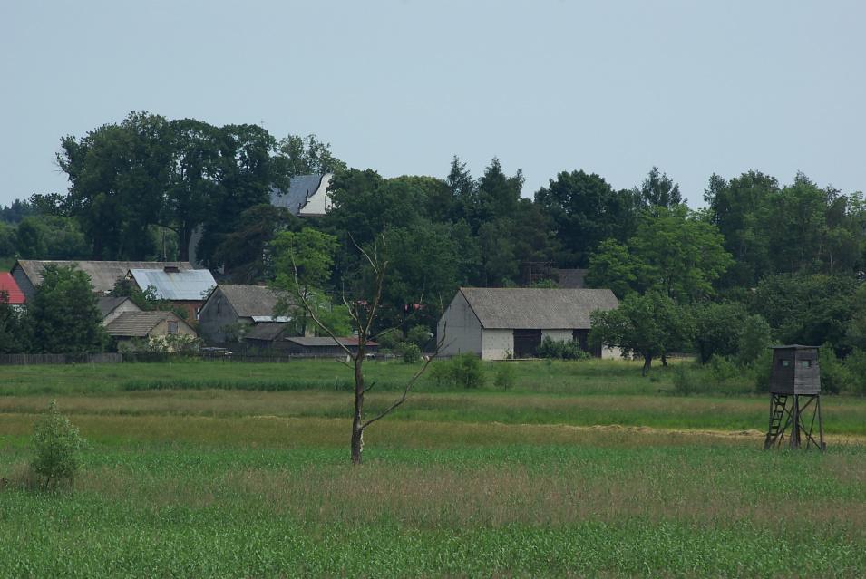 Dolina Pilicy, okolice Przyłęku