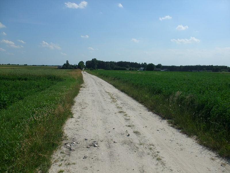 okolice Szczekocin - Rowerem do Sędziszowa