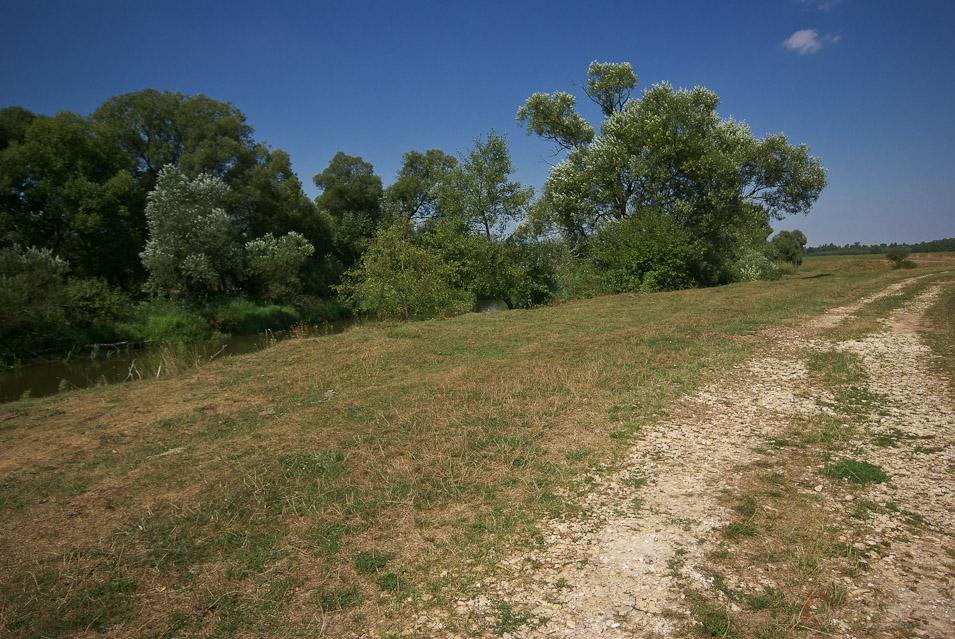 Dolina Środkowej Pilicy