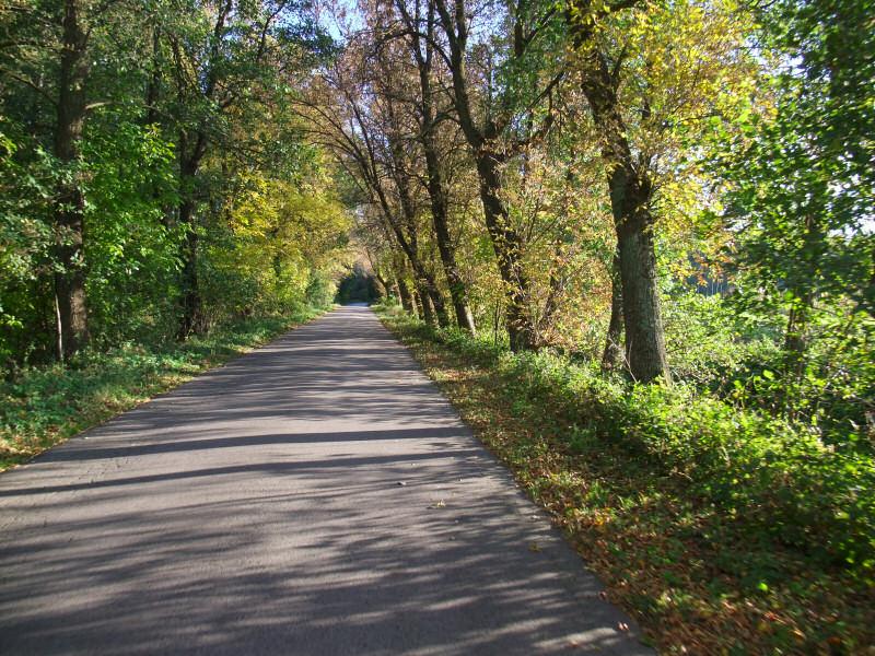 Dolina Środkowej Pilicy - Ciężkowiczki