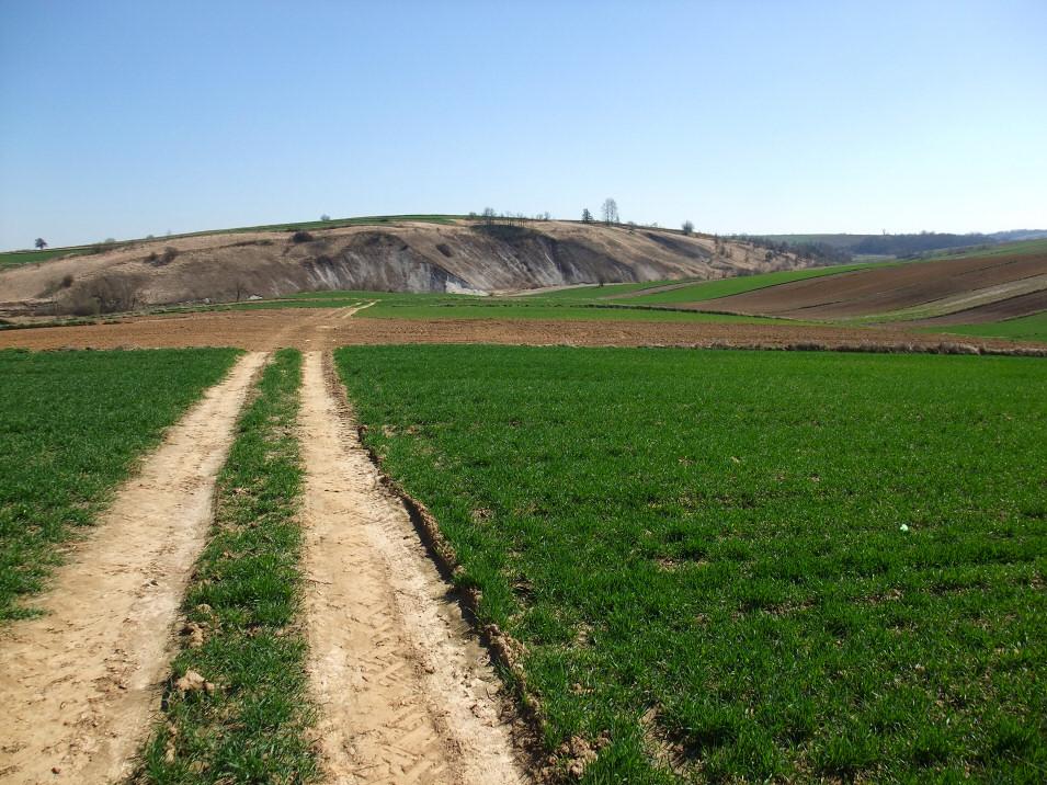 Dolina Szreniawy