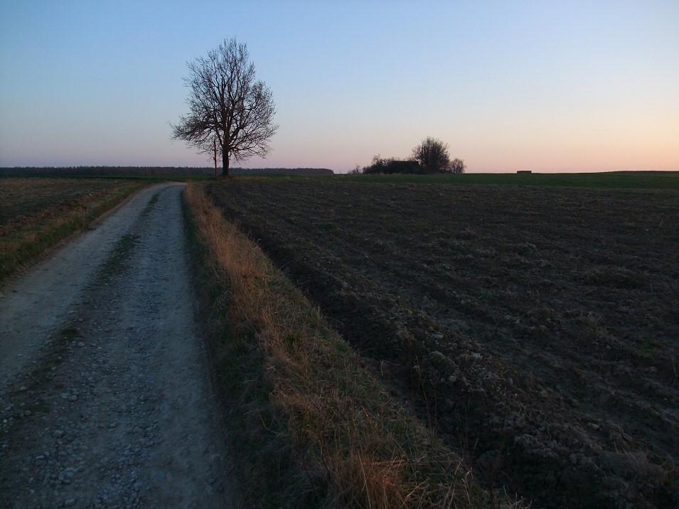 Biała Droga