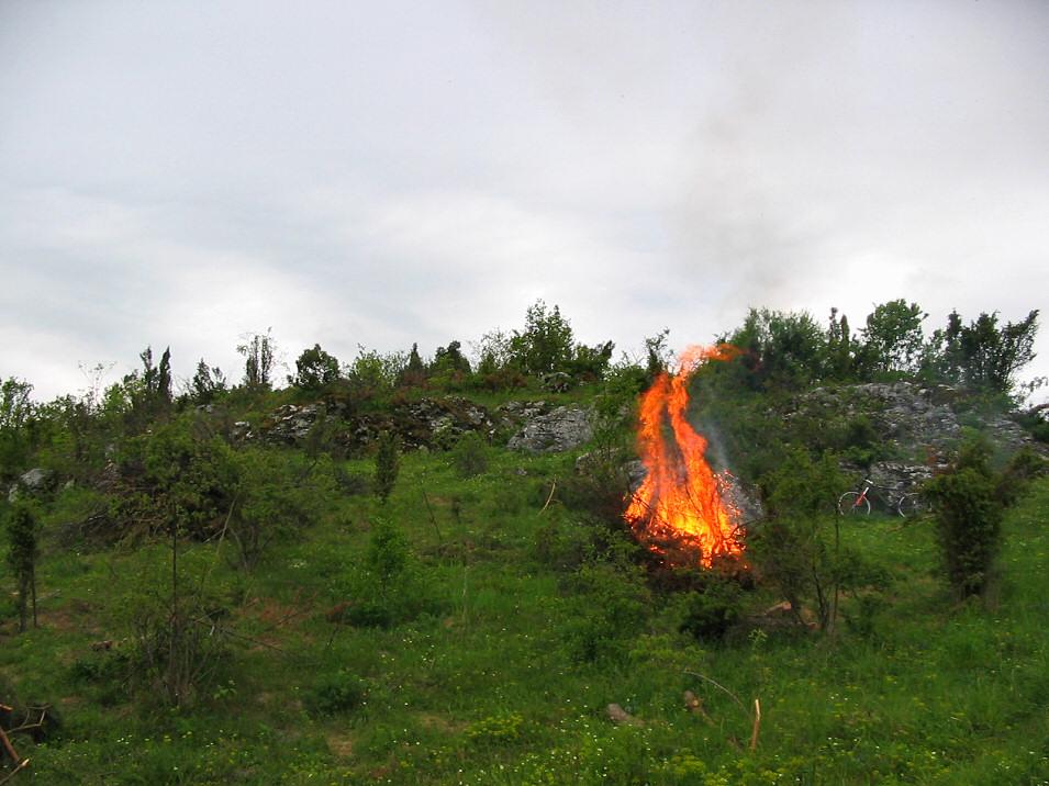 Wycinka na skałach Grzędy Mirowskiej