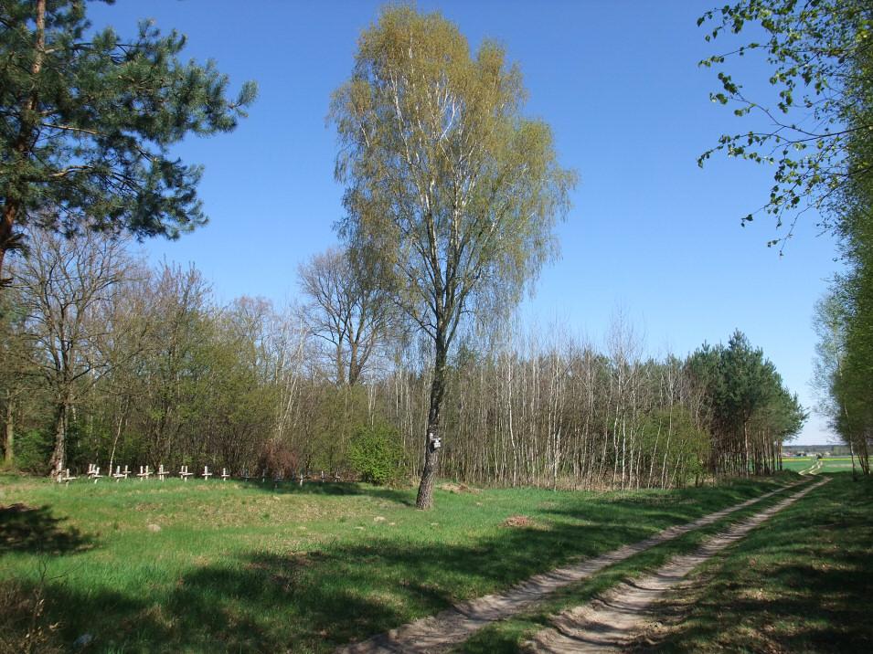 Cmentarz wojenny w Silnicy