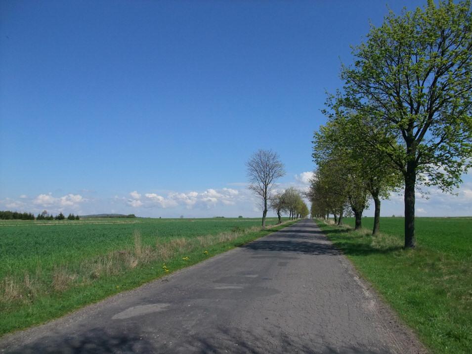 okolice Wielgomłynów
