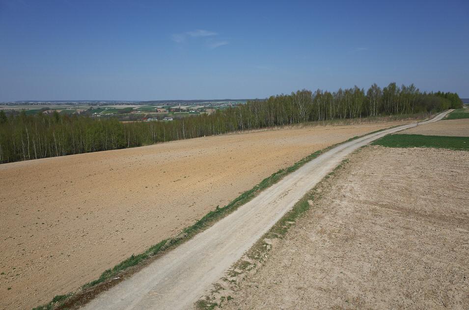 Wyżyna Miechowska, Okolice Łaz