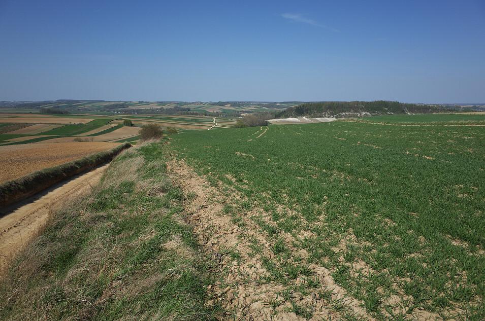 Wyżyna Miechowska, Ilkowice, Góra Cybowa