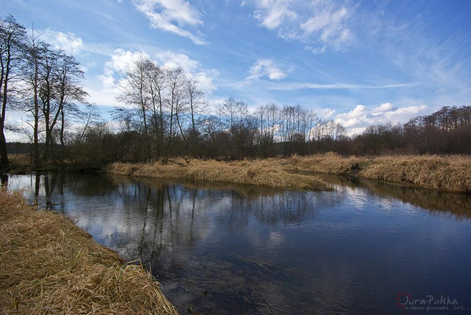 Tu Wierna Rzeka (po prawej) łączy swe nurty z Białą Nidą