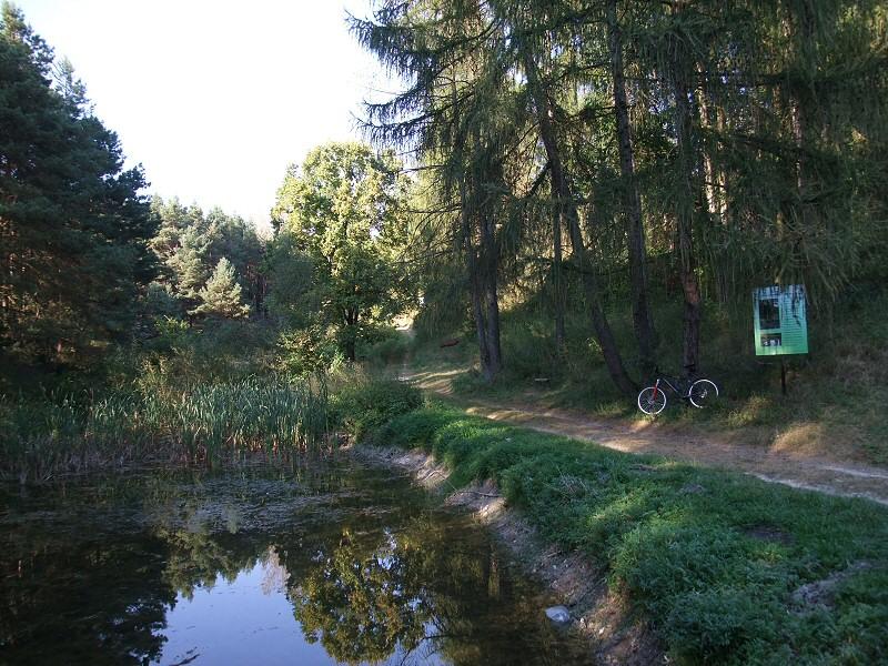 rez. Wzgórza Sobkowskie