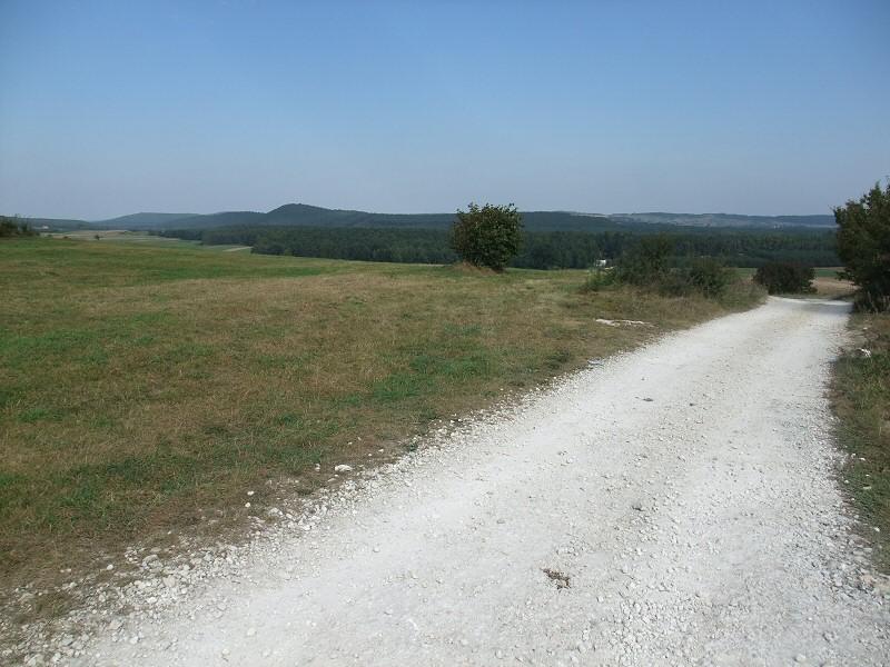 Karsznice
