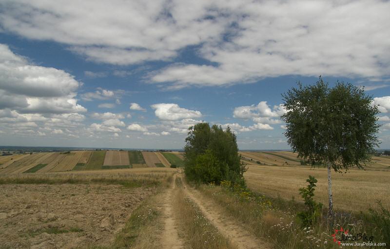 Próg Lelowski, Zagórze
