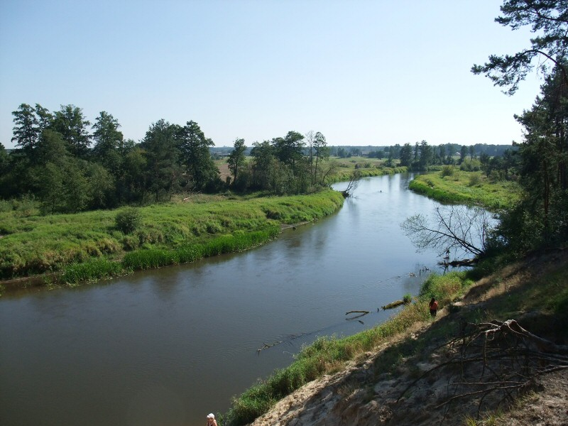 Spływ kajakowy Pilicą, JuraPolska.com