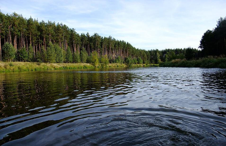 Spływ kajakowy Wartą, Załęczański Łuk Warty, JuraPolska.com