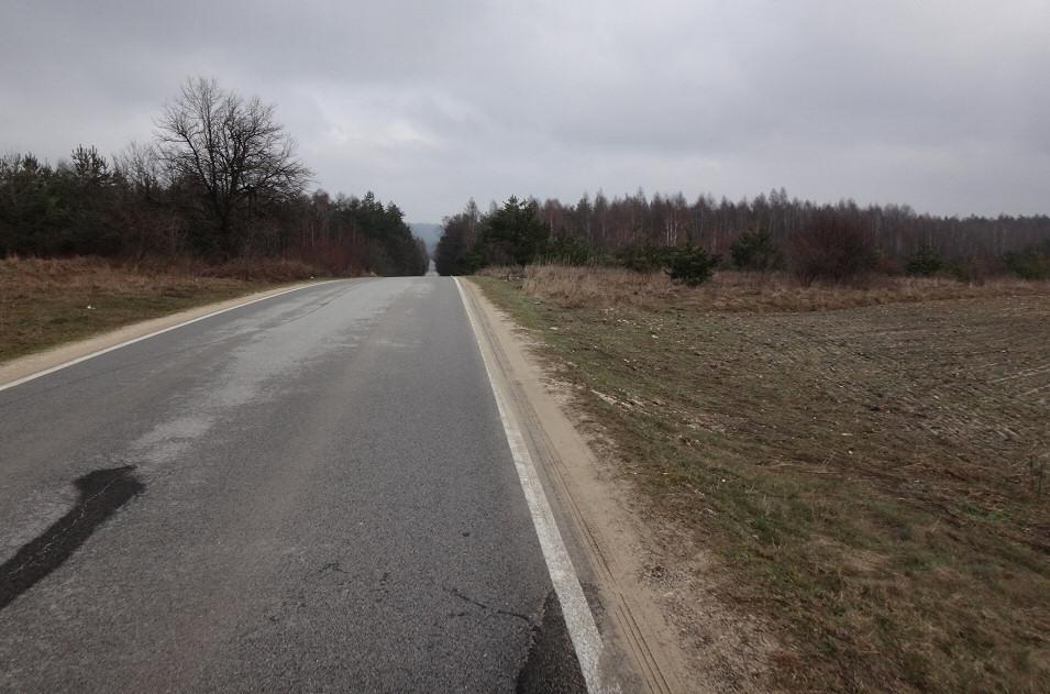 okolice Mirowa