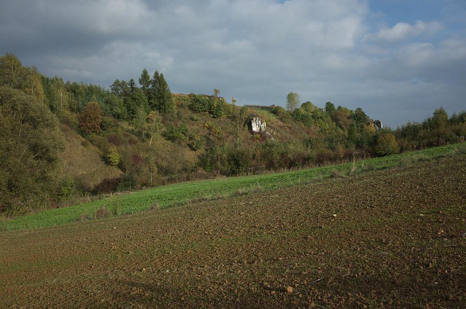 Dolina Dłubni