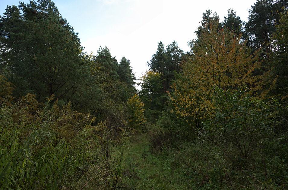 okolice Bydlina
