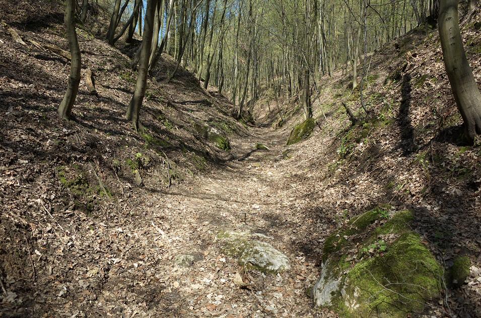 Góry Gorzkowskie