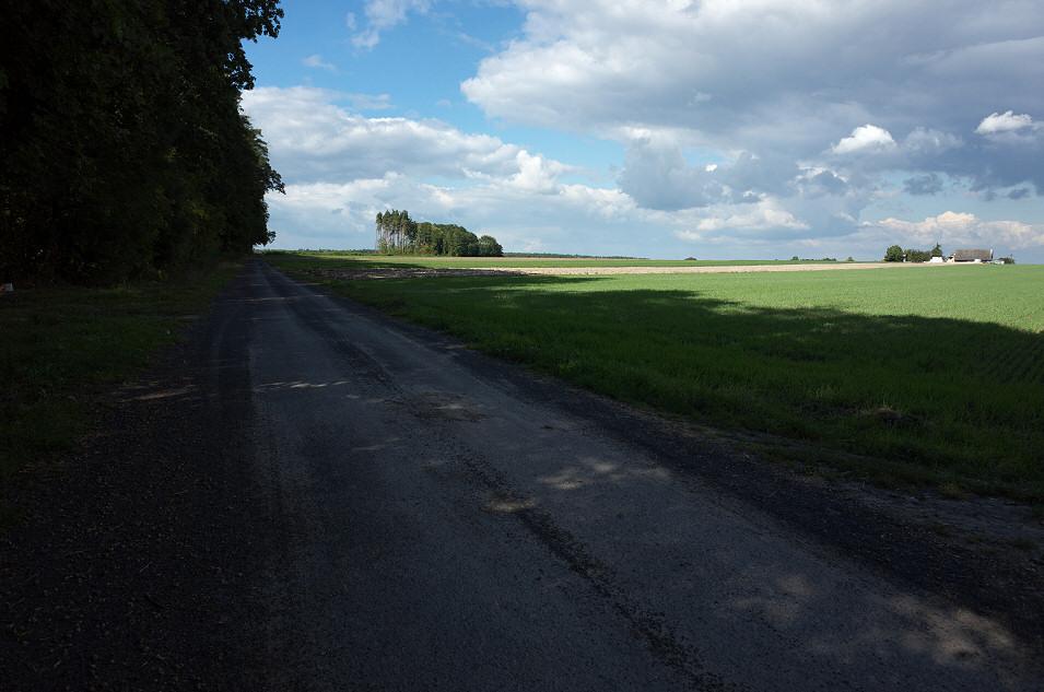 okolice Łysin