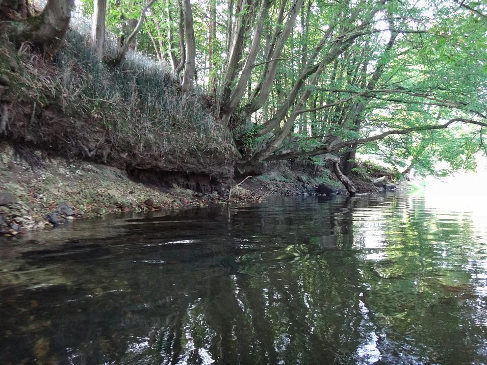 Spływ kajakowy Liswartą