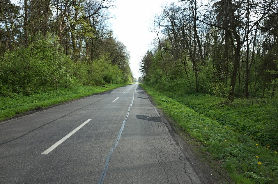Dąbrowa Zielona