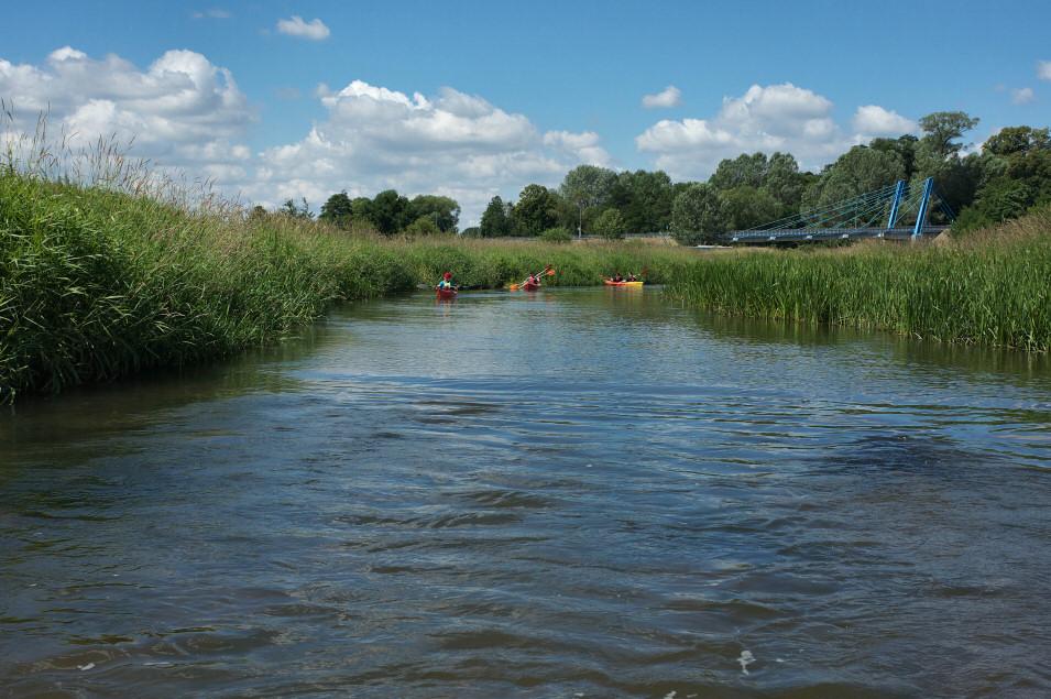 Spływ kajakowy Pilicą