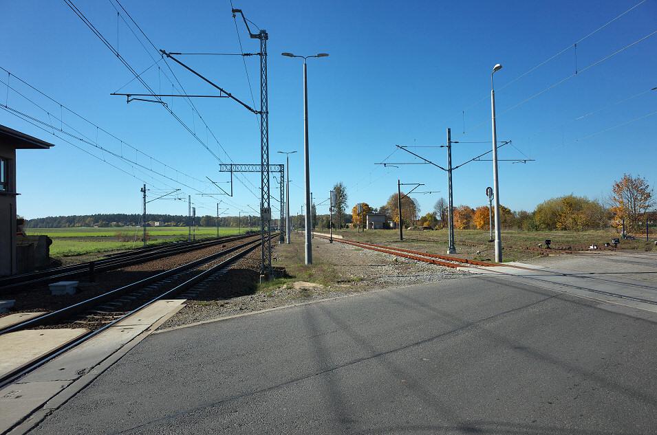 Lisów