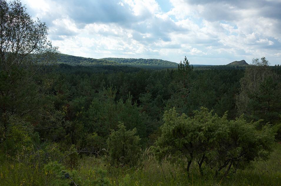Widok z Kielników